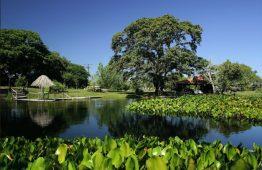 Refúgio da Ilha EcoLodge