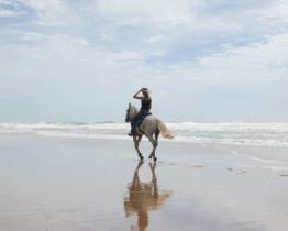 sejour-cheval-au-bresil-2